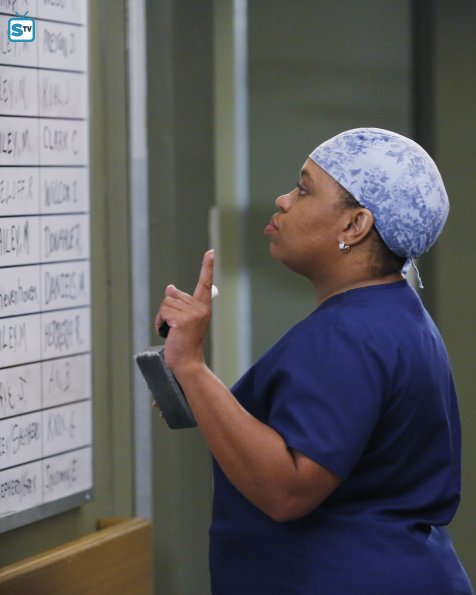 Greys Anatomy, 12x7 (1)