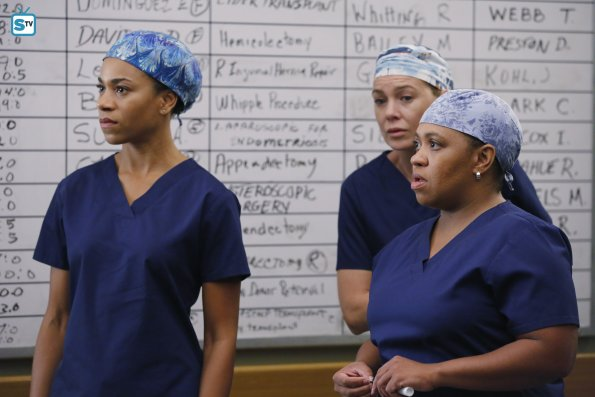 Greys Anatomy, 12x7 (2)
