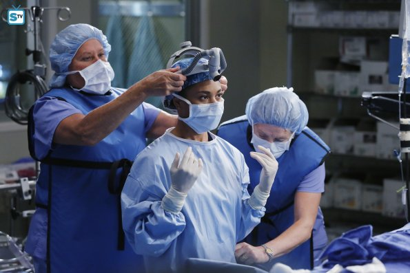 Greys Anatomy, 12x7 (3)