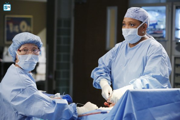 Greys Anatomy, 12x7 (4)