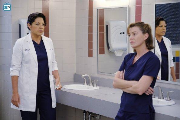 Grey's Anatomy (14)