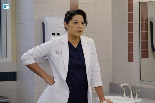 Grey's Anatomy (15)