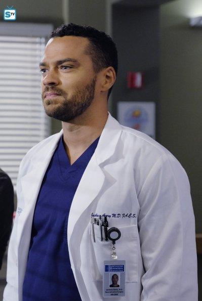 Grey's Anatomy (19)