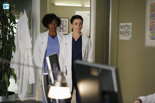 Grey's Anatomy (25)