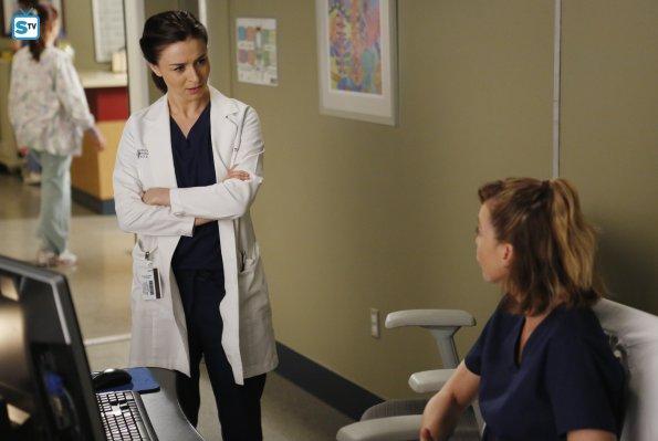 Grey's Anatomy (26)