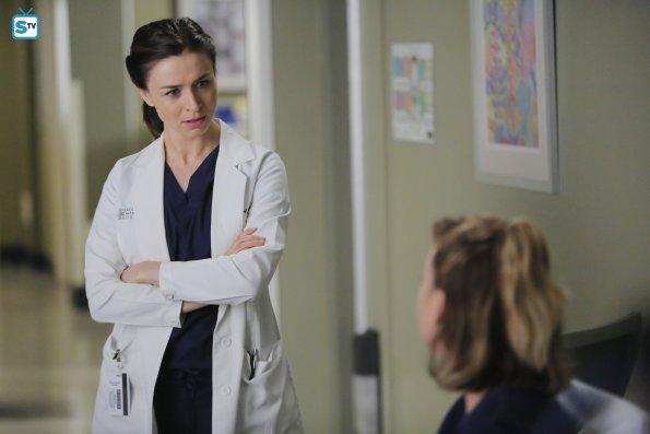 Grey's Anatomy (27)