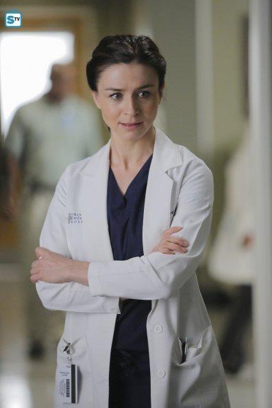Grey's Anatomy (28)