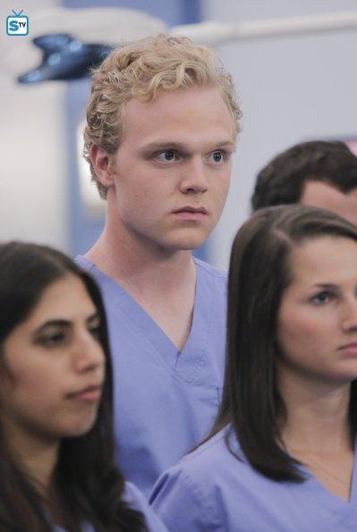 Grey's Anatomy (31)