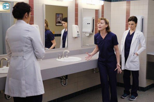 Grey's Anatomy (7)