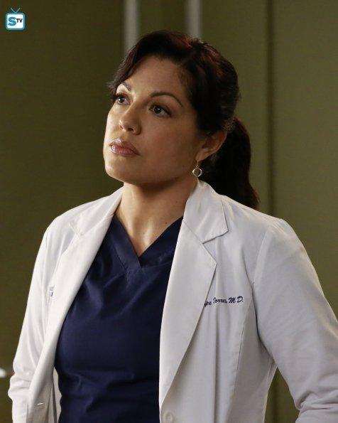 Grey's Anatomy, 12x10 (10)