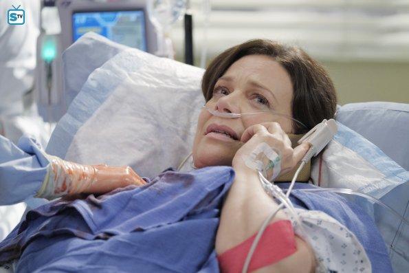 Grey's Anatomy, 12x12 (16)