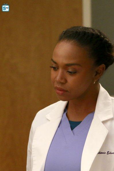 Grey's Anatomy, 12x12 (2)