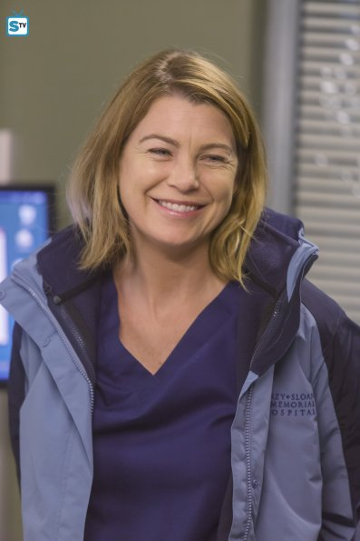 Grey's Anatomy 12x13 (7)