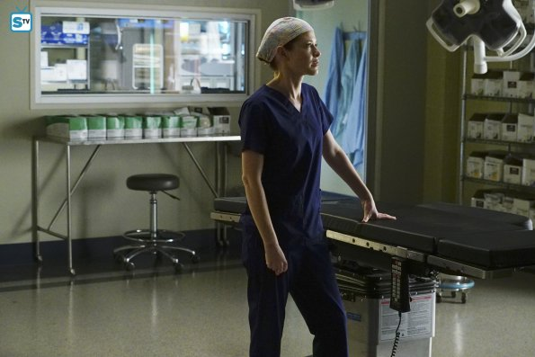 Grey's Anatomy 12x15 (14)