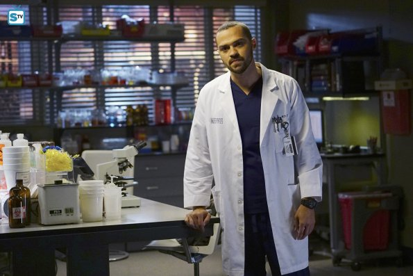 Grey's Anatomy 12x15 (17)