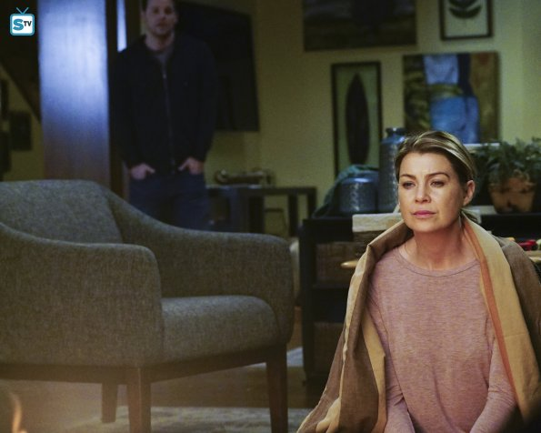 Grey's Anatomy, 12x16 (18)