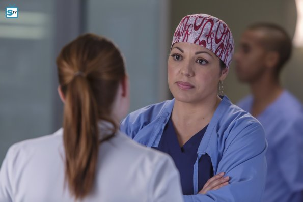 Grey's Anatomy, 12x16 (3)