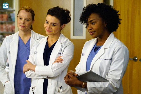 Greys Anatomy, 12x17 (3)