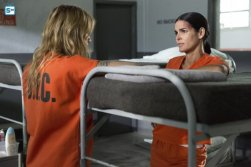 Rizzol and Isles, 7x8 (3)