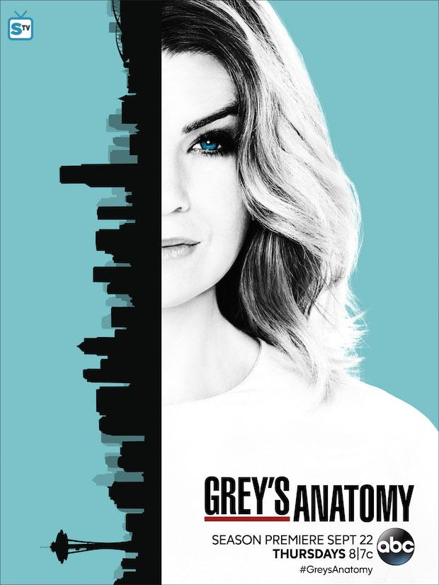 greys-anatomy-season-13-poster_FULL