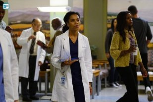 greys-anatomy-13x5-1