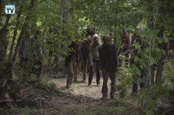 TWD_905_GP_0711_0011_RT_595_Spoiler TV Transparent